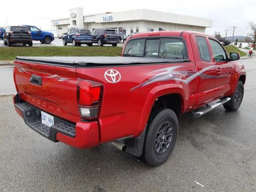Toyota side stripes and logo decal